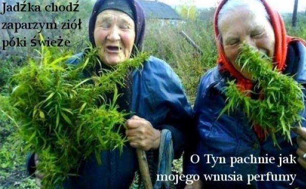 http://www.odchamsie.com.pl/demot/1745027058436499376_middle.jpg